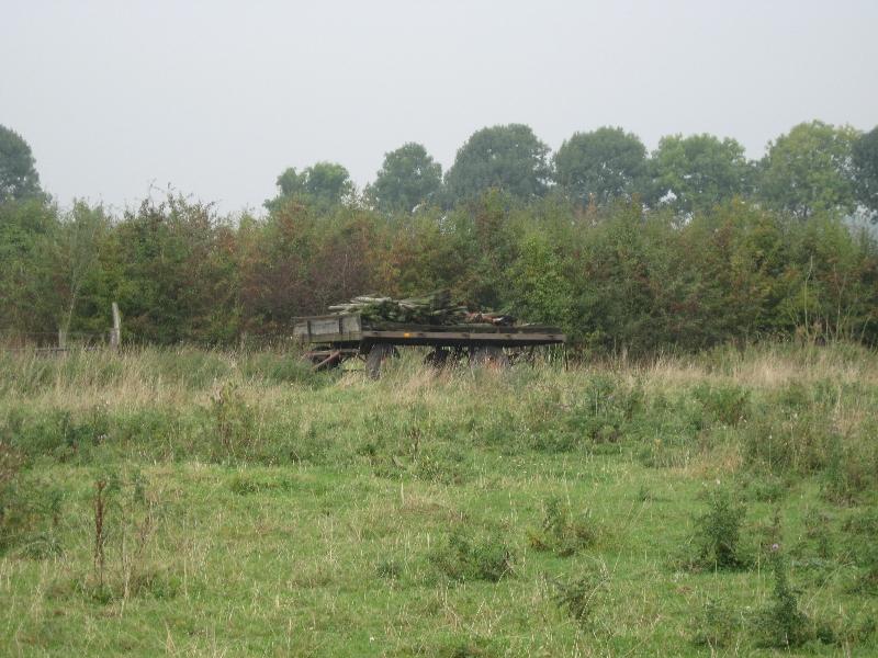 struweel en oude wagen