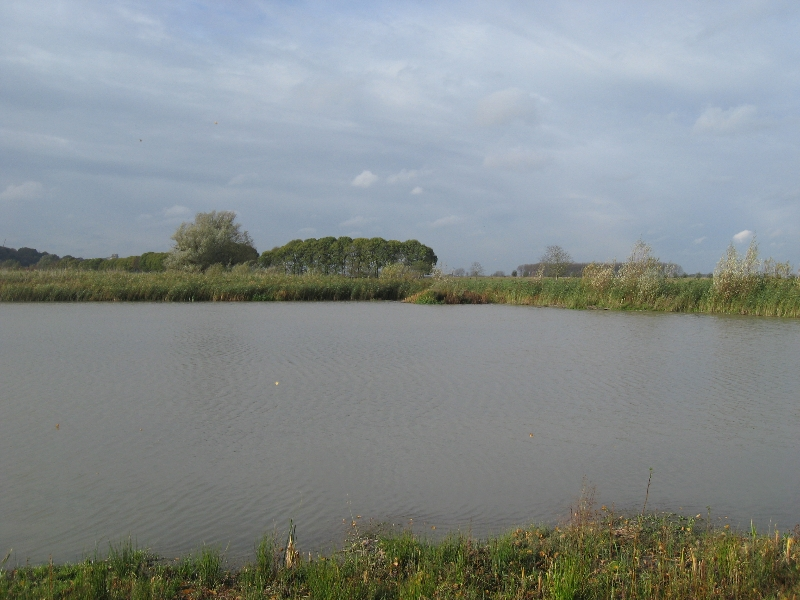 open water bij \'t Meertje